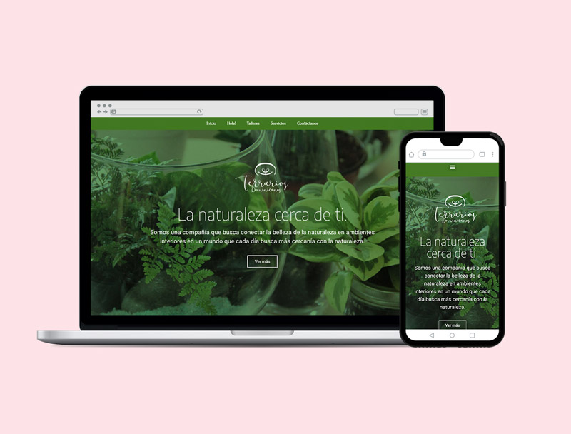 Website Terrarios